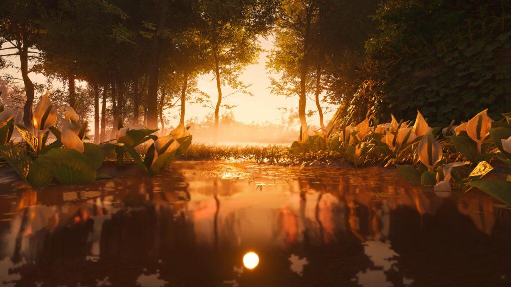 étang reflétant le soleil couchant au crépuscule